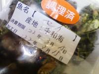 NEC_0523.jpg